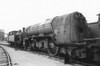60100 SPEARMINT - Gresley LNER Class A3 4-6-2 - built 05/30 by Doncaster Works as LNER No.2796 - 07/46 to LNER No.100, 04/49 to BR No.60100 - 06/65 withdrawn from 64A St Margarets - I believe this the boiler that is now on 60103.