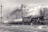 60050 PERSIMMON - Gresley LNER Class A3 4-6-2 - built 10/24 by Doncaster Works as LNER No.2549 - 07/46 to LNER No.50, 08/48 to BR No.60050 - 09/63 withdrawn from 34E New England - seen here at Low Fell in 1958.