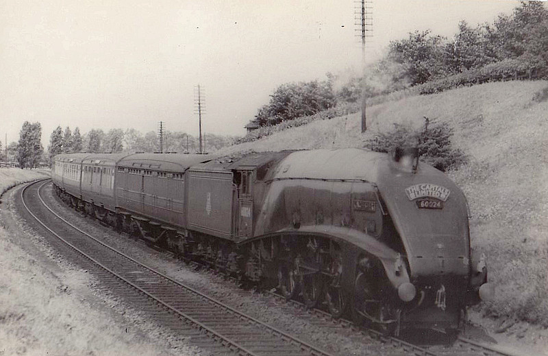 60024 KINGFISHER - Gresley LNER Class A4 4-6-2 - built 12/36 by Doncaster Works as LNER No.4483 - 05/46 to LNER No.24, 06/48 to BR No.60024 - 03/66 withdrawn from 61B Aberdeen Ferryhill.