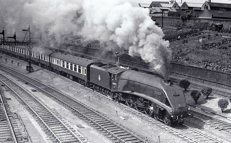 60015 QUICKSILVER - Gresley LNER Class A4 4-6-2 - built 09/35 by Doncaster Works as LNER No.2510 - 06/46 to LNER No.15, 12/48 to BR No.60015 - 04/63 withdrawn from 34A Kings Cross - seen here on Holloway Bank, 06/55.