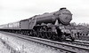 60110 ROBERT THE DEVIL -  Gresley LNER Class A3 4-6-2 - built 07/23 by Doncaster Works as GNR No.1479 - 04/25 to LNER No.4479, 08/46 to LNER No.110, 03/49 to BR No.60110 - 53/63 withdrawn from 34A Kings Cross - seen here at Walton, north of Peterborough, on the 0810 Newcastle - Kings Cross on August 15th, 1959.