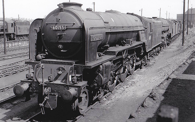 60155 BORDERER - Peppercorn BR Class A1 4-6-2 - built 09/49 .by Doncaster Works - 10/65 withdrawn from 50A York North - seen here at York in 1965.