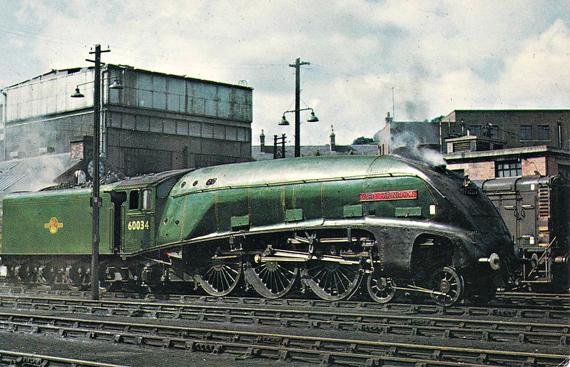 60034 LORD FARINGDON - Gresley LNER Class A4 4-6-2 - built 07/38 by Doncaster Works as LNER No.4903 - 11/46 to LNER No.34, 03/48 to BR No.60034, original name PEREGRINE removed - 08/66 withdrawn from 61B Aberdeen Ferryhill.