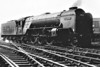 60516 HYCILLA - Thompson LNER/BR Class A2 4-6-2 - built 11/46 by Doncaster Works as LNER No.516 - 10/48 to BR No.60516 - 11/62 withdrawn from 50A York North, where seen in 1961.