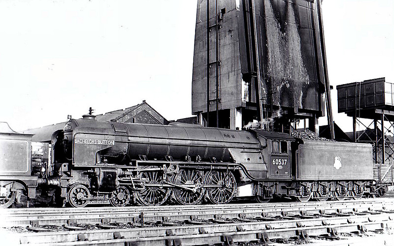 60537 BACHELOR'S BUTTON - Peppercorn LNER Class A2 4-6-2 - built 06/48 by Doncaster Works - 12/62 withdrawn from 64A St Margarets - seen here at Haymarket.