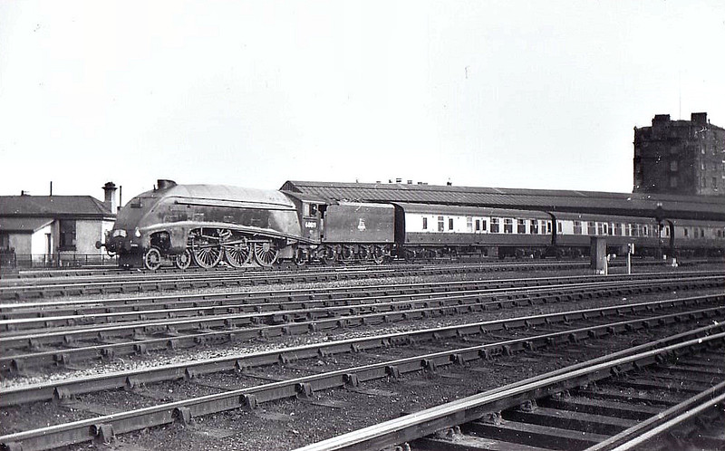60019 BITTERN - Gresley LNER Class A4 4-6-2 - built 12/37 by Doncaster Works as LNER No.4464 - 08/46 to LNER No.19, 10/48 to BR No.60019 - 09/66 withdrawn from 61B Aberdeen Ferryhill - seen here at York, 10/56.