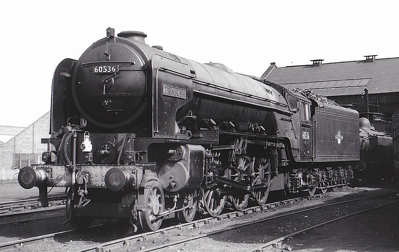 60536 TRIMBUSH - Peppercorn LNER Class A2 4-6-2 - built 05/48 by Doncaster Works - 12/62 withdrawn from 50A York North - seen here at Haymarket.