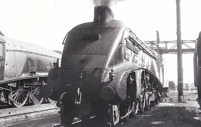 60006 SIR RALPH WEDGWOOD - Gresley LNER Class A4 4-6-2 - built 01/38 by Doncaster Works as LNER No.4466 - 12/43 original name HERRING GULL removed, renamed SIR RALPH WEDGWOOD, 05/46 to LNER No.6, 12/48 to BR No.60006 - 09/65 withdrawn from 61B Aberdeen Ferryhill - seen here at New England in 1963.