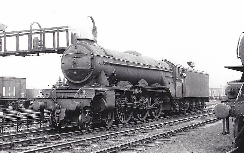60038 FIRDAUSSI -  Gresley LNER Class A3 4-6-2 - built 08/34 by Doncaster Works as LNER No.2503 - 10/46 to LNER No.38, 06/48 to BR No.60038 - 11/63 withdrawn from 55H Leeds Neville Hill - seen here at York.