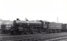 61093 - Thompson LNER/BR Class B1 4-6-0 - built 11/46 by North British Loco Co. as LNER No.1093 - 03/49 to BR No.61093 - 07/65 withdrawn from 41J Langwith Junction.