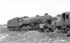 61077 - Thompson LNER/BR Class B1 4-6-0 - built 09/46 by North British Loco Co. as LNER No.1077 - 05/48 to BR No.61077 - 05/62 withdrawn from 9G Gorton - seen here at Neasden, 07/61.
