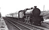 61108 - Thompson LNER/BR Class B1 4-6-0 - built 12/46 by North British Loco Co. as LNER No.1108 - 08/48 to BR No.61108 - 12/62 withdrawn from 64A St Margarets.