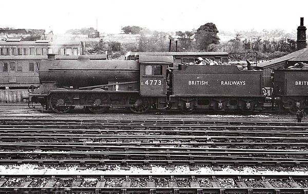 E4773 - Gresley LNER Class J39 0-6-0 - built 12/28 by Darlington Works as LNER No.2720 - 11/46 to 4773, 03/48 to BR No.E4773, 07/51 to BR No.64773 - 08/59 withdrawn from 30A Stratford - seen here at Colchester in 1949.