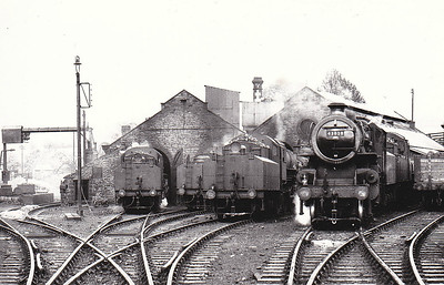 43038 - Ivatt LMS/BR Class 4MT 2-6-0 - built 07/49 by Horwich Works - 05/64 withdrawn from 55B Stourton - seen here at Kirkby Stephen in November 1953 with no less than 4 sister locos. 7 locos of this class had been transferred to this depot that year.