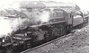 43020 - Ivatt LMS Class 4MT 2-6-0 - Ivatt LMS Class 4MT 2-6-0 - built 12/48 by Horwich Works - 10/66 withdrawn from 5B Crewe South.