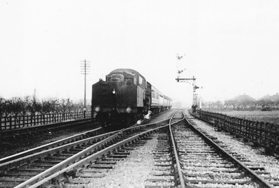 43091 - BR Ivatt Class 4MT 2-6-0 - built 12/50 by Darlington Works - 06/65 withdrawn from 41D Canklow - 31D South Lynn loco from new to 03/59 - seen here at Long Sutton on the last Up passenger train, February 28th, 1959.