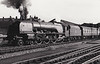 46236 CITY OF BRADFORD - Stanier LMS Coronation Scot Class 4-6-2 - built 07/39 by Crewe Works as LMS No.6236 - 04/48 to BR No.46236 - 03/64 withdrawn from 12A Carlisle Kingmoor - seen here at Crewe.