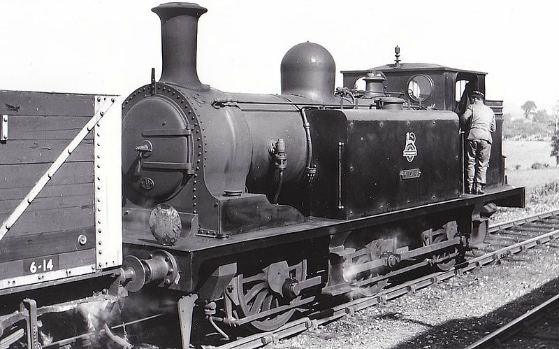 W1 MEDINA - Stroudley LBSCR Class E1 0-6-0T - built 01/1879 by Brighton Works as LBSCR No.136 BRINDISI - 1906 name removed - 07/32 to IOW as W1 MEDINA - 06/57 withdrawn from 71E Newport IOW, where seen 04/53.