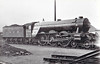 Class A3 - 2746 FAIRWAY -  Gresley GNR/LNER 4-6-2 - built 10/28 by Doncaster Works  - 10/46 to LNER No.92, 04/49 to BR No.60092 - 10/64 withdrawn from 52A Gateshead.