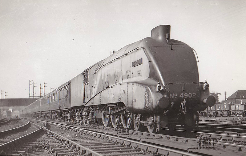 Class A4 - 4902 SEAGULL - Gresley LNER 4-6-2 - built 06/38 by Doncaster Works - 10/46 to LNER No.33, 04/48 to BR No.60033 - 12/62 withdrawn from 34A Kings Cross - seen here at Hatfield.