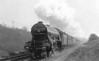 Class A3 - 2549 PERSIMMON - Gresley 4-6-2 - built 10/24 by Doncaster Works - 07/46 to LNER No.50, 08/48 to BR No.60050 - 06/63 withdrawn from 34E New England - seen here at Ganwick in 1928.