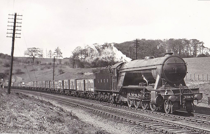 Class P1 - 2394 - Gresley LNER 2-8-2 - built 11/25 by Doncaster Works - 07/45 withdrawn from New England - seen here at Ganwick.