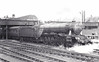 Class A3 - 56 CENTENARY - Gresley 4-6-2 - built 02/25 by Doncaster Works - 07/46 to LNER No.56, 05/49 to BR No.60056 - 05/63 withdrawn from 35B Grantham - seen here at Doncaster.