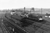 WELLINGBOROUGH - A busy picture of a busy spot in around 1960. Finedon Road Yard was just north of Wellingborough and just north of Wellingborough Depot. The road bridge from which this picture was taken was a favourite hangout of mine as lad. The extensive yard to the east of the running lines is just visible in distance and still exists today thanks to GBRF. A Standard or Ivatt Class 2 tank is on a northbound local Autotrain while D5034 and D5379 are probably backing down into the yard to collect a southbound freight.
