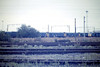 CREWE GRESTY LANE - A fine line-up of withdrawn Class 25's on the Gresty Lane scrapline, 21/09/85.