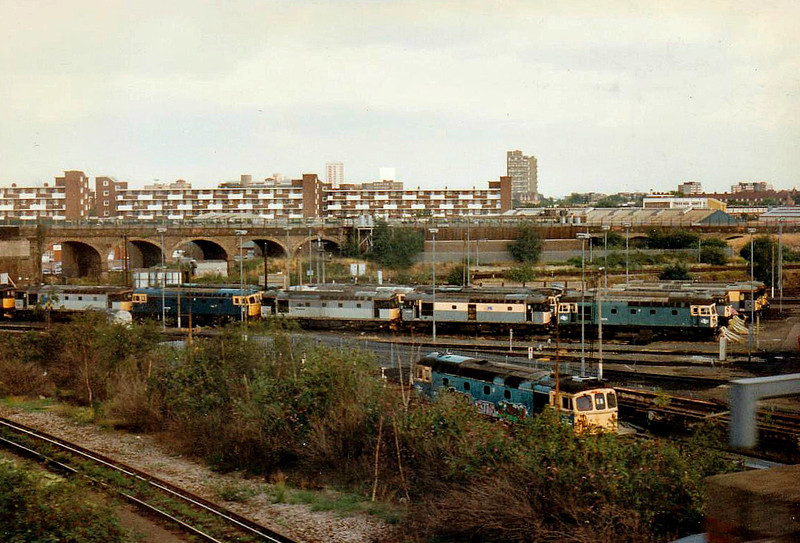 STEWARTS LANE LOCOMOTIVE DEPOT - an array of Class 33's, most of them withdrawn, viewed from the window of a train bound for Victoria, 28/08/96.