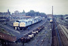 CREWE WORKS - the Scrapline, playing host to at least 15 Class 40's, all awaiting the cutter's torch, 21/09/85.