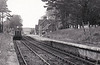 ASHEY - Opened in December 1875 by the Ryde & Newport Railway, Ashey boasted the only passing loop on the line. In 1926 the loop was taken out of service and the platform extended, at a different height, as can be seen in this picture taken in about 1950, looking west, This platform was taken out of use and services transferred to the overgrown platform on the left, the right-hand one having its face removed. The station closed in December 1966 but was reopened by the Isle of Wight Steam Railway in 1993. A branch ran from Ashey to Ashey Quarry, and an additional station opened on this line by April 1884 to serve the adjacent race course. This station ceased operation around 1930.