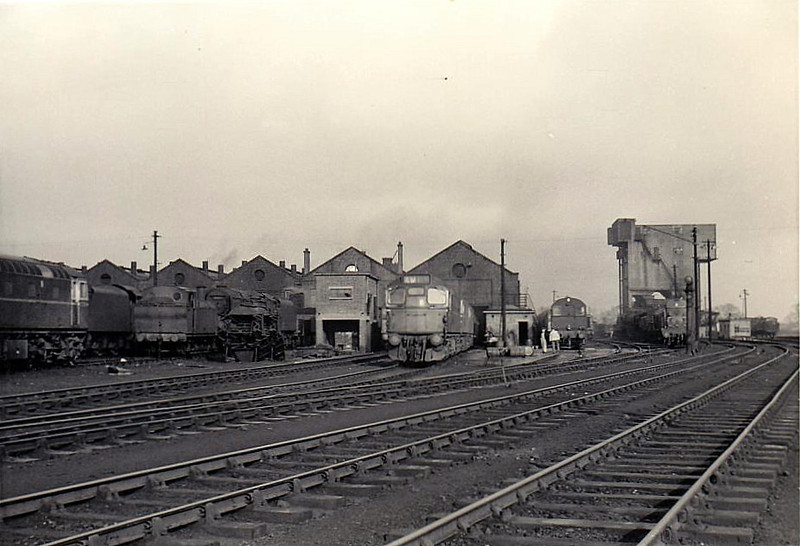 SCOTTISH LOCOMOTIVE DEPOT - somewhere south and west of Glasgow I suspect, perhaps Ayr or Corkerhill, judged by the number of Class 26's on depot, seen here in about 1960.