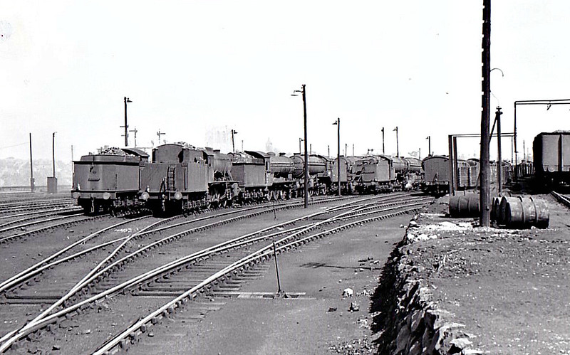 YORK MOTIVE POWER DEPOT - Seen here in July 1950, York was a massive steamshed with a very large allocation of all types of locomotive. In this shot, we can see, nearly all from the rear, a WD 2-8-0, a B16 4-6-0 and at least two K3 2-6-0's