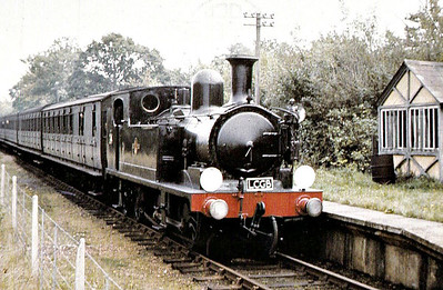 RAIL TOUR - 'VECTIS RAIL TOUR' - organised by the LCGB ad run on October 3rd, 1965. W24 CALBOURNE is seen here at Whippingham. The tour ran as follows:-  34002 - London Waterloo - Epsom - Horsham - Chichester 33027/33020 - Chichester - Lavant 33020/33027 - Lavant - Chichester 34002 - Chichester - Portsmouth Harbour Boat - Portsmouth - Ryde W24- Ryde Pier Head - Ryde Esplanade - Smallbrook Jn - Haven Street - Newport - Cowes - Newport - Haven Street - Smallbrook Jn - Ryde Esplanade - Ryde Pier Head W24/W14 - Ryde Pier Head - Ryde Esplanade - Smallbrook Jn - Sandown - Shanklin - Ventnor W14/W24 - Ventnor - Shanklin - Sandown - Smallbrook Jn - Ryde Esplanade - Ryde Pier Head Boat - Ryde - Portsmouth 73155 - Portsmouth Harbour - Guildford - London Waterloo