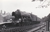 RAIL TOUR - 'SOUTHERN COUNTIES ENTERPRISE' - organised by the Southern Counties Touring Society and run on August 25th, 1963. 60112 ST SIMON is seen here at Hamworthy Junction. The tour ran as follows:-<br /> <br /> 60112 - London Waterloo - Clapham Jn Earlsfield - Wimbledon - Surbiton - Woking - Basingstoke - Winchester City - Eastleigh - Southampton Central - Brockenhurst - Bournemouth Central - Poole - Hamworthy Jn<br /> 30052 - Hamworthy Jn - Hamworthy - Hamworthy Jn<br /> 60112 - Hamworthy Jn - Wareham - Dorchester South - Weymouth Jn<br /> 7782/4689 - Weymouth Jn - Melcombe Regis - Portland - Easton<br /> 4689/7782 - Easton - Portland - Melcombe Regis - Weymouth Jn (1) - Dorchester West - Maiden Newton - Bridport - West Bay<br /> 7782/4689 - West Bay - Bridport - Maiden Newton<br /> 60112 - Maiden Newton - Yeovil Pen Mill - Westbury - Warminster - Salisbury - Andover Jn - Basingstoke - (reverse of outward route) - London Waterloo