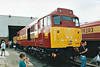 OPEN DAY - TOTON EWS DIESEL DEPOT, 1998 - August Bank Holiday Weekend 1998 - 31466, the only Class 31 to receive EWS livery, is on display at the EWS Toton Depot Open Day, 29/08/98. This engine was officially withdrawn in 12/01 and is now preserved on the Dean Forest Railway.