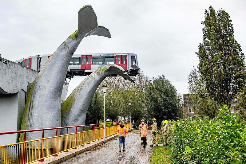 SPIJKENISSE, Netherlands - (3) On November 2nd, 2020, whilst being shunted into the stock sidings near the station, this tram ran through the buffers and landed on a 25-foot high sculpture of a massive whale's tail in the adjacent park.<br /> Fortunately, the car was empty of passengers at the time, and while the driver was taken to hospital and checked out, he was, according to press reports, more bewildered and confused than anything else, and was released the same day.<br /> The tram was a write off, with most of it's undercarriage ripped away and the chassis bent. Recovery was not a simple task as the sculptures sit in water and a crane could not be placed beneath the tram to lift it down.<br /> Due to it's precarious position, two large cranes were brought in on November 3rd and in a day-long operation, the leading carriage was removed and lifted down. The rear carriage was recovered from the sidings.