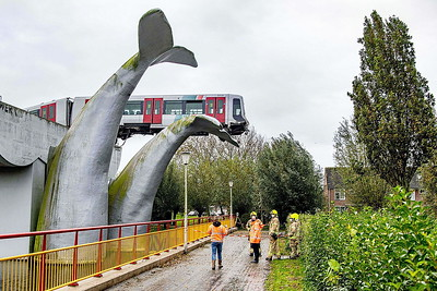 SPIJKENISSE, Netherlands - (3) On November 2nd, 2020, whilst being shunted into the stock sidings near the station, this tram ran through the buffers and landed on a 25-foot high sculpture of a massive whale's tail in the adjacent park. Fortunately, the car was empty of passengers at the time, and while the driver was taken to hospital and checked out, he was, according to press reports, more bewildered and confused than anything else, and was released the same day. The tram was a write off, with most of it's undercarriage ripped away and the chassis bent. Recovery was not a simple task as the sculptures sit in water and a crane could not be placed beneath the tram to lift it down. Due to it's precarious position, two large cranes were brought in on November 3rd and in a day-long operation, the leading carriage was removed and lifted down. The rear carriage was recovered from the sidings.