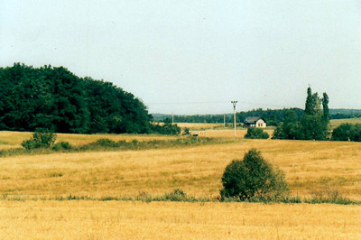 CZECH REPUBLIC - CD - a view of the terrain-following nature of the Osoblaha - Tremesna ve Slesku line near Horni Povelice. The white house is the station, 10/08/04.