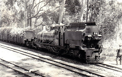 SOUTH AFRICA - SAR -  150 - Class NG16 2ft gauge 2-6-2+2-6-2 Garratt, built 1967 by Hunslet-Taylor, Works No.3895, class of 8 - all withdrawn by mid-1980's - seen here at Umzinto on a sugar cane train, 09/73.