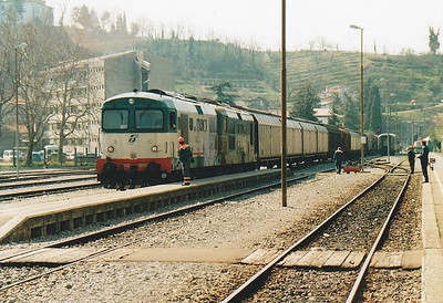 FS - D345 1082/D345 1090 - 145 engines built from 1974 for freight duties - arrive with a long freight from Gorizia in Italy, just the other side of the border, 01/04/05.