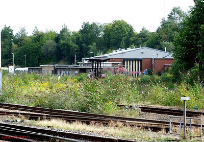 The overgrown yard that constituted Leicester TMD, as seen from Leicester station on 23rd August 2009.