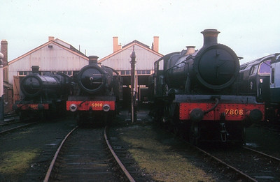 """2800 Class 2-8-0 3822 (left), 6959/'Modified Hall' Class 4-6-0 6990 """"Witherslack Hall"""" and 7800/'Manor' Class 4-6-0 7808 """"Cookham Manor"""" at Didcot GWS on 16th July 1988."""