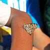 Butterfly release at school  June 17
