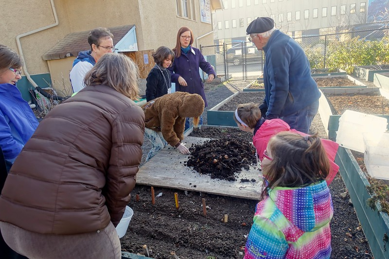 Removing compost worms for the winter