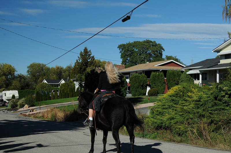 Joining her horse in a trot through the neighbourhood.