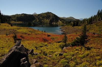 Red fireweed overlooking Rock Isle Lake.