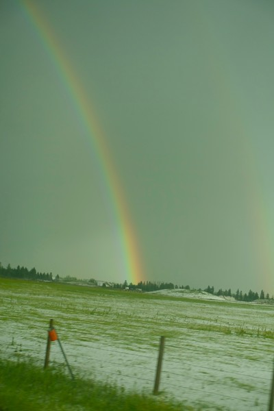 Carol passed the camera back over to me just as this scene appeared with the rainbow hovering over a hail covered field.