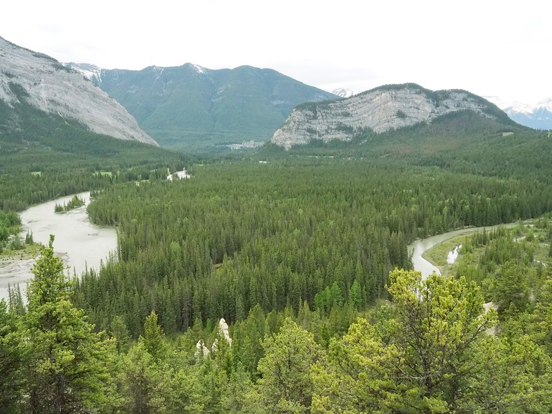The meandering Bow River makes a U-turn as it flows towards the Banff Springs Hotel in the distance.